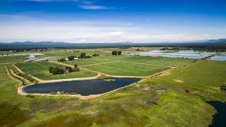 Northern California Ranch | Shasta View Ranch, Shasta County California