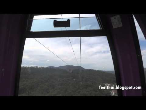 cable car ride over the pine forest  Da Lat