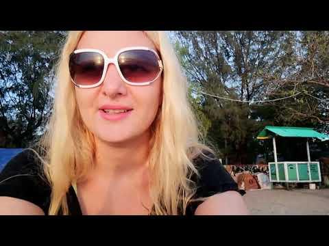 Gili Trawangan // Vlog 3 // my life in Bali and Gili