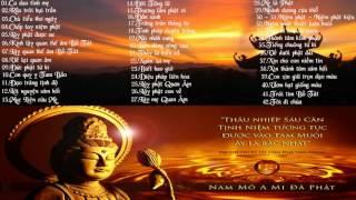 Tuyển tập nhạc Phật Giáo hay nhất 2016 - Nhạc Thiền Tĩnh Tâm