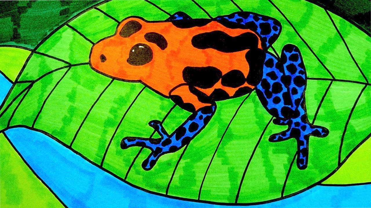 It is a graphic of Smart Frog Drawing For Kids