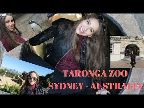 Dia en el ZOO de Sydney - Taronga Zoo