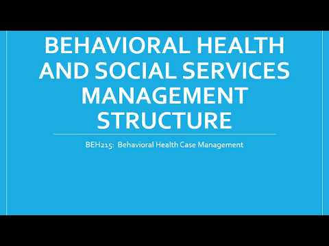 Behavioral Health and Social Services Management Structure