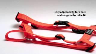 Dog Collars, Leads & Harnesses - Reflective Walk'r'Cise Range