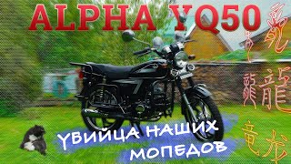 МОПЕД АЛЬФА!!! ВСЯ ПРАВДА!!! Alpha YQ50 / ЯГУАР по Китайски / Иван Зенкевич