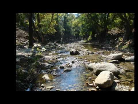 One drop - Natural mystic