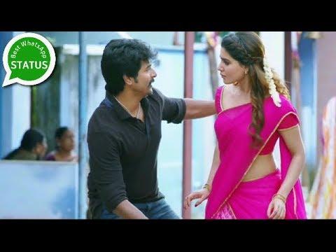 Best Tamil Love Songs   Sivakarthikeyan Hits   Seemaraja   Whatsapp Status