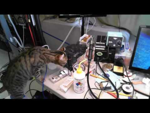Cat, Shop Tour, PCB Preheater strikes back @scanlime-in-progress