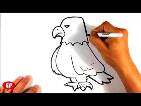 How to Draw an Eagle - Cute - Easy Pictures to Draw