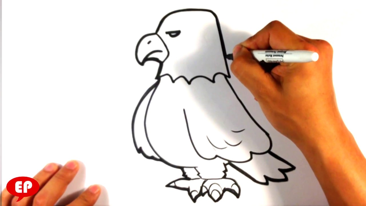 How To Draw An Eagle Cute Easy Pictures To Draw Youtube