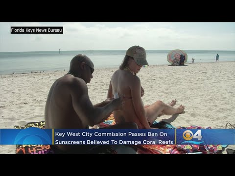 Key West City Commission Bans Certain Sunscreens to Protect Coral Mp3
