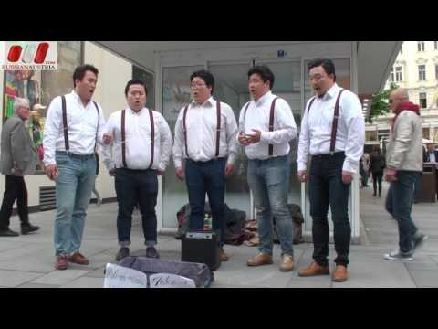 Seicento (South Korea). Vocal. Amazing Vienna Street Performers by Russian Austria (FHD)