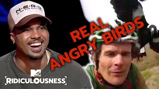 There's Been A Rise In Bird Attacks. It's Science. | Ridiculousness