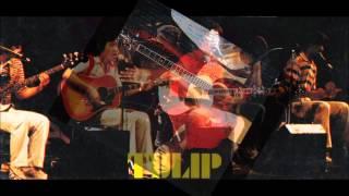 チューリップ-Live Act TULIP