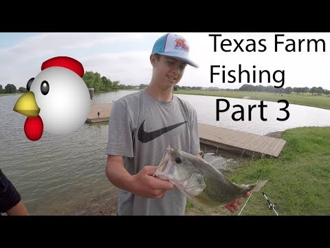 Texas farm fishing part 3 youtube for Fish farms in texas