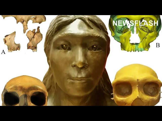 US Researcher Says Working On Worlds Oldest Human Remains Is A Dream