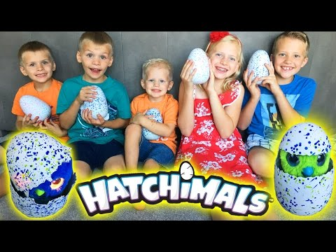 Where Can I Buy Hatchimals Surprise Eggs How Much Do Hatchimals Cost