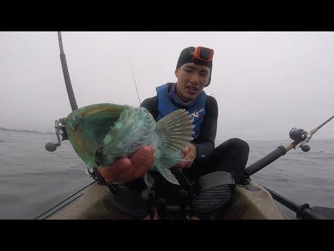 Multispecies Kayak Fishing The California Coast