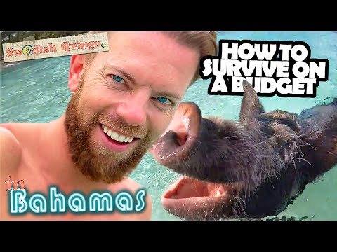 Travel Bahamas cheap – 9 free things to do in Nassau & swim with pigs   Budget guide 1 week