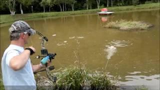 carpa com arco e flecha pse archery