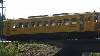 [警笛あり]JR四国 キハ54形 しまんトロッコ 窪川駅付近通過