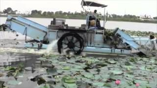 cleantec infra clearing of lotus mats in gep sagar lake dungarpur