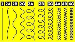 Erfahre Deinen Wahren Haartyp Mit Diesem Einfachen Test