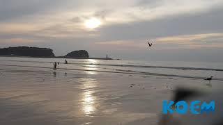 (바다ASMR)월간 바다보다-9월호 《만리포해수욕장》