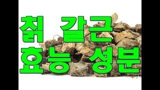 칡(kudzu root, 갈근)의 한의학적 효능