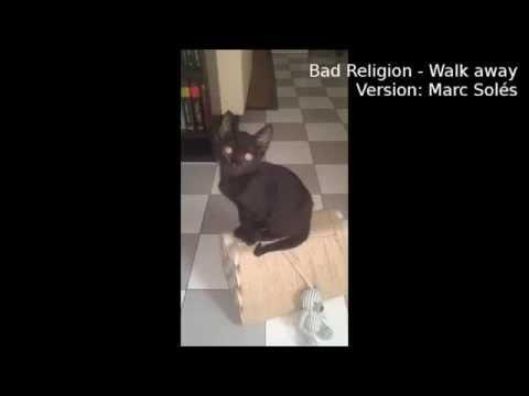 bad-religion---walk-away-(versió:-marc-solés)