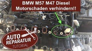 BMW Drallklappen entfernen um Motorschaden zu verhindern ‼️ M57 M47 | Auto Tutorial