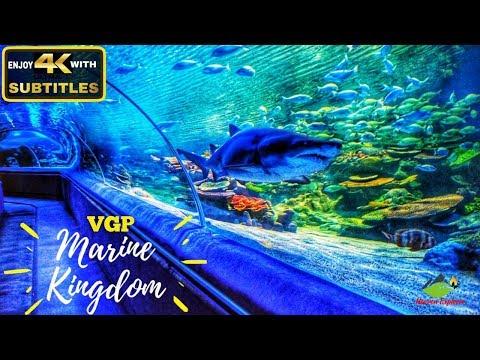 VGP Marine Kingdom | India's First Underwater Tunnel Aquarium | Must Visit Place In Chennai