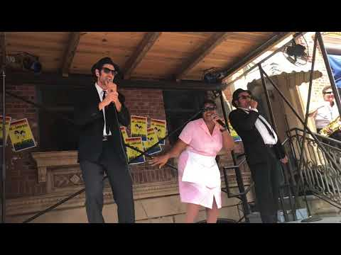 Blues brothers at Universal (soul man)