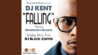Falling (feat. Malehloka Hlalele)