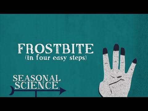 Cells and Organisms: Lesson Plan | UNC-TV: Science