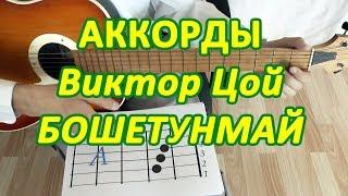 Бошетунмай Аккорды Виктор Цой группа Кино разбор песни на гитаре бой табы
