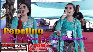 Pepeling Danik Sinar & Citra Margareta // CS. Ambarwangi Live Pogung // Dani Pro // Ambarwangi Audio