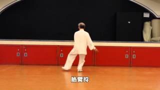 13式太極拳背向 (2013.08.25)