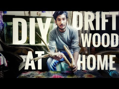 DIY Drift Wood at home in ZERO Cost in HINDI