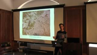Imprecise Tropics: Camilo Restrepo in Conversation