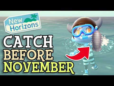 Animal Crossing New Horizons: CATCH FISH & BUGS BEFORE NOVEMBER (October Critters You NEED To Find)