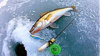 Ловля СУДАКА зимой Зимняя рыбалка 2021