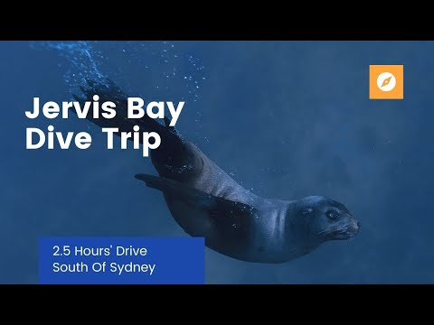 Jervis Bay Weekend Dive Trip