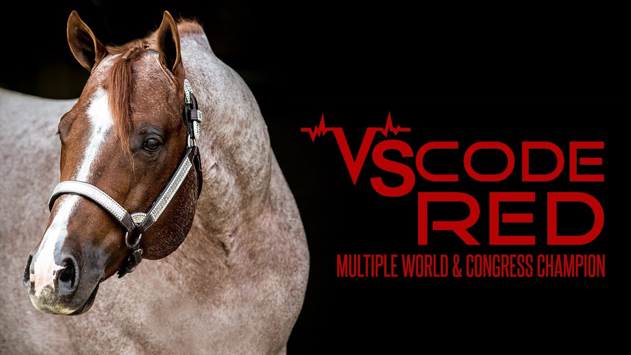 VS Code Red: 2007 Red Roan AQHA Stallion - YouTube