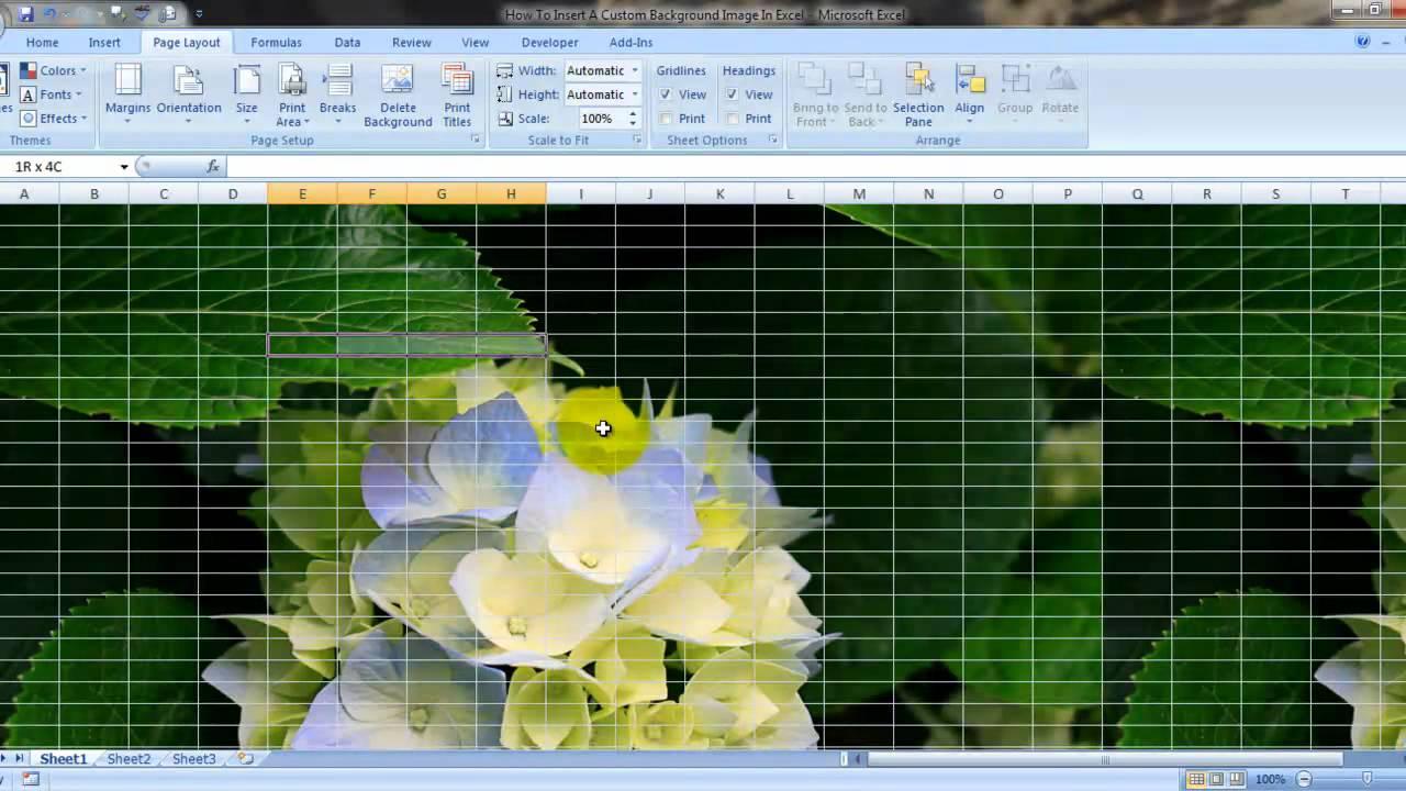 Background image excel - Insert Custom Background Image Excel