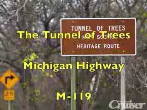 The Motorcyclists Ride The Tunnel of Trees