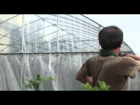 видео: Крепление для пленки теплиц