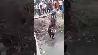 funny Shaadi Moments 2017