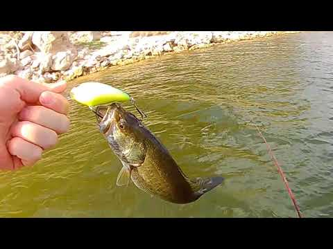 Lake Whitney Crankbait Craziness!