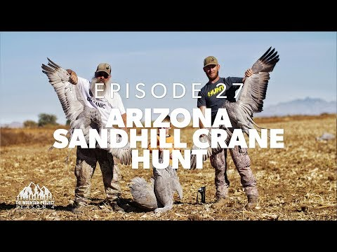 Rib Eye Of The Sky - E.27 - Arizona Sandhill Crane Hunt